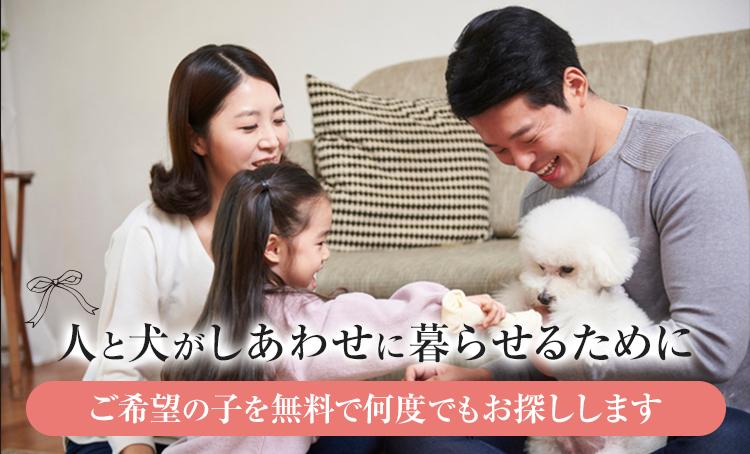 人と犬がしあわせに暮らせるためにご希望の子を無料で何度でもお探しします